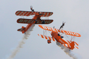 wingwalk_02